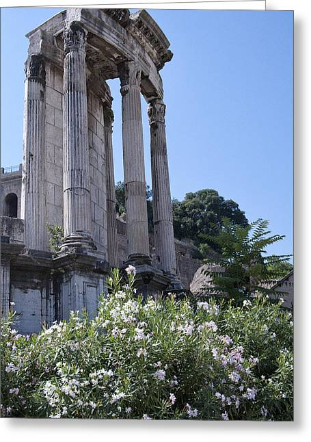 Best Flower Images Greeting Cards - Temple of Vesta Greeting Card by Melany Sarafis