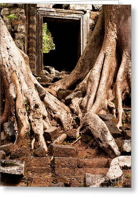 Tree Roots Photographs Greeting Cards - Temple Ruins 02 Greeting Card by Rick Piper Photography