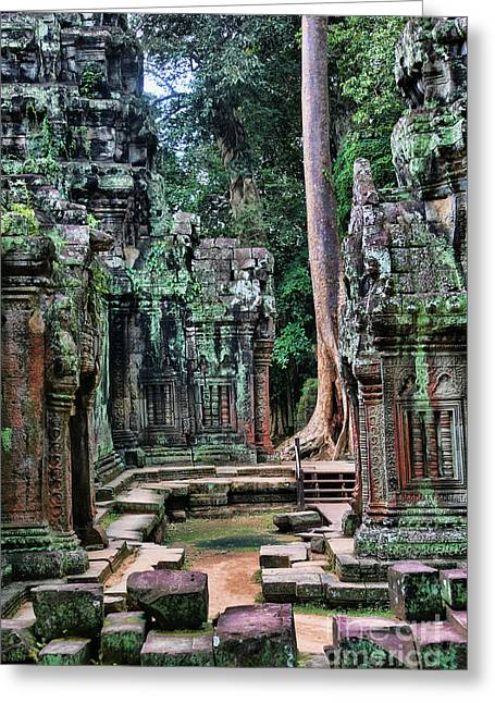 Tree Roots Greeting Cards - Temple Ta Prohm V Greeting Card by Chuck Kuhn