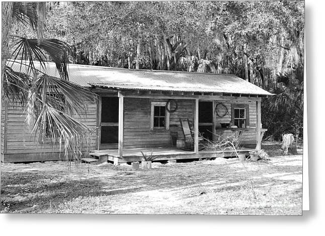 Tin Roof Greeting Cards - Tenant House Black and White Greeting Card by D Hackett