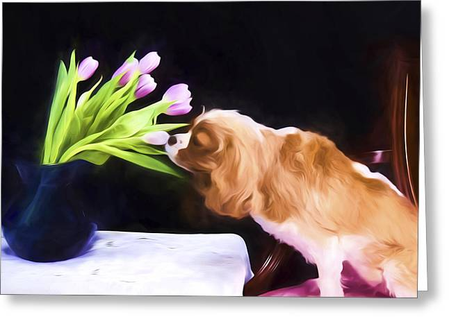 Doggies Greeting Cards - Tender Moment Bwteen Cavalier king Charles And Tulips Greeting Card by Daphne Sampson