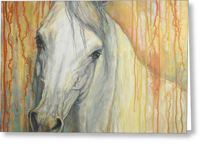 Horse Portraits Greeting Cards - Tenderness Greeting Card by Silvana Gabudean