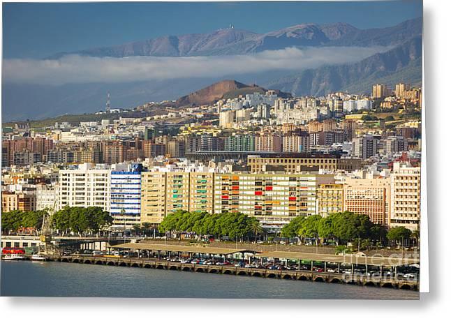 Santa Cruz Wharf Greeting Cards - Tenerife Morning Greeting Card by Brian Jannsen