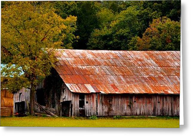Tennessee Farm Greeting Cards - Tennessee Country Barn Greeting Card by James Potts