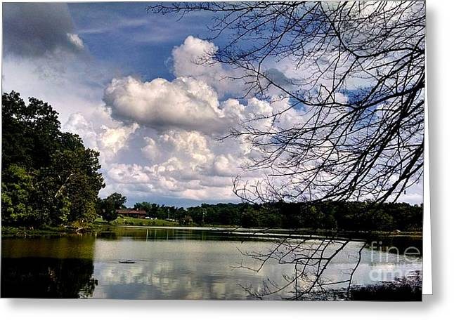 Metal Fish Art Photography Greeting Cards - Tennessee Dreams Greeting Card by Chris Tarpening