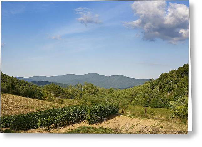 Tennessee Farm Greeting Cards - Tennessee Farmland Greeting Card by Brendan Reals