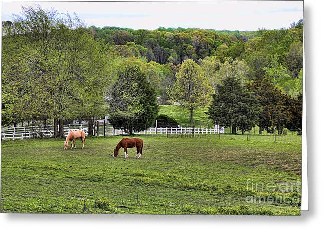 Tennessee Farm Greeting Cards - Tennessee Landscape I Greeting Card by Chuck Kuhn