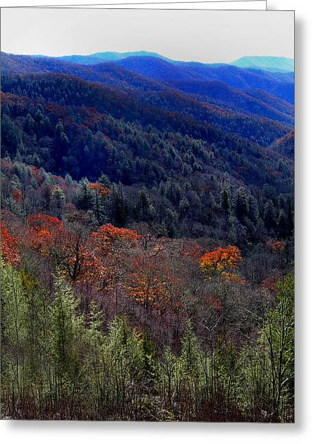 Tenn Greeting Cards - Tennessee Mountains Greeting Card by Skip Willits