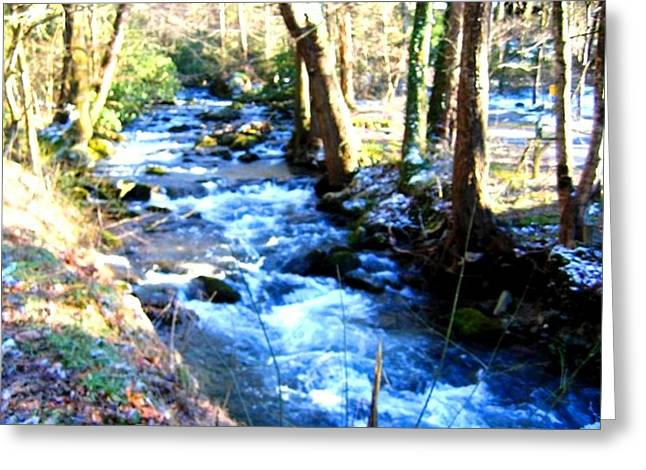 Gatlinburg Tennessee Greeting Cards - Tennessee Stream Greeting Card by Bonnie Clark Weatherford