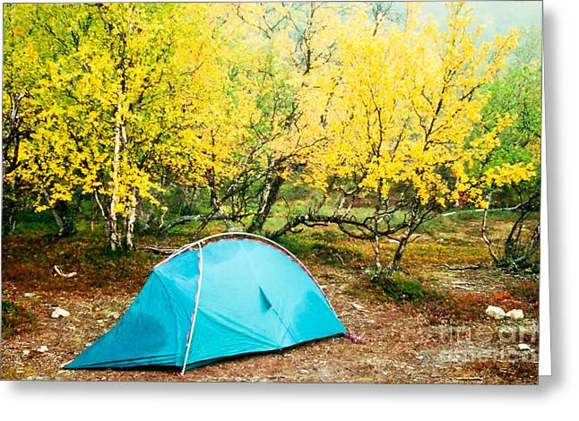 Solitary Activities Greeting Cards - Tent pitched in fall under yellow birch trees Greeting Card by Stephan Pietzko
