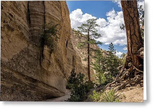 Santa Fe Greeting Cards - Tent Rocks Canyon National Monument 1 - Santa Fe New Mexico Greeting Card by Brian Harig