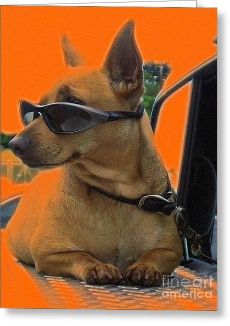 Guard Dog Greeting Cards - Terminally Cool Watch Dog Greeting Card by Barbie Corbett-Newmin
