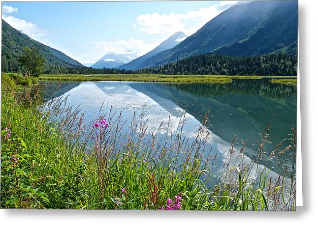 Tern Digital Art Greeting Cards - Tern Lake in Kenai Peninsula-AK Greeting Card by Ruth Hager