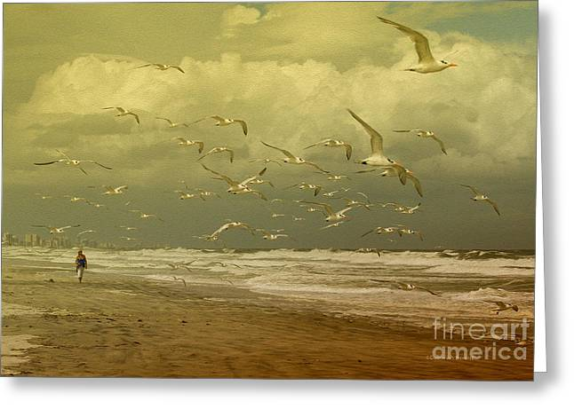 Tern Photographs Greeting Cards - Terns in the Clouds Greeting Card by Deborah Benoit