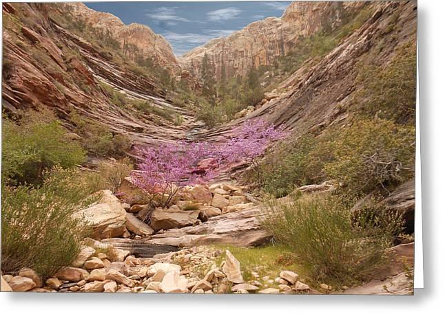 Terrace Canyon Greeting Card by Alan Socolik