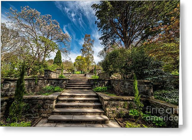 Stepping Stones Greeting Cards - Terrace Garden Greeting Card by Adrian Evans