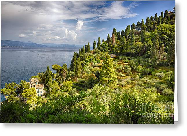 Union Terrace Greeting Cards - Terraced Hillside of Portofino Greeting Card by George Oze