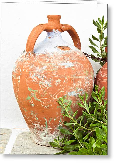 Rustic Scene Greeting Cards - Terracotta pot Greeting Card by Tom Gowanlock