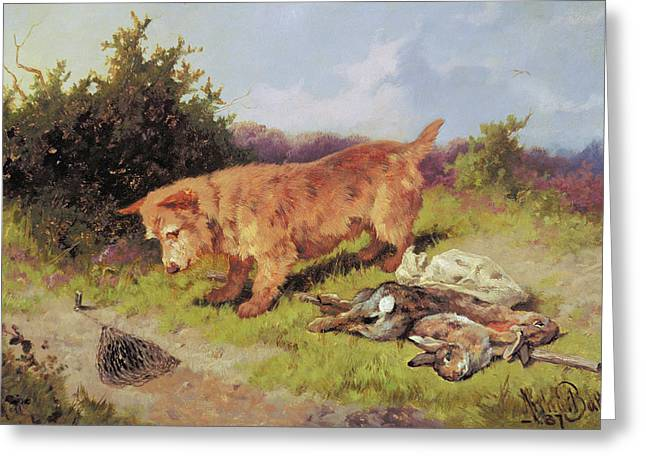 Bunny Greeting Cards - Terrier Watching A Rabbit Trap Greeting Card by Arthur Batt