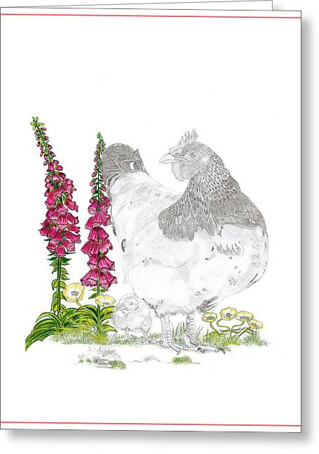 Primroses Pastels Greeting Cards - Terrys Hen Greeting Card by Gemma Best
