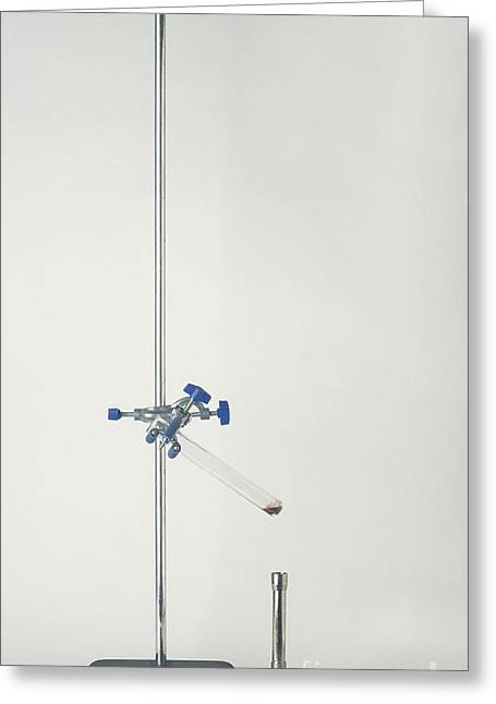 Setup Greeting Cards - Test Tube Angled In Clamp Stand Greeting Card by Andy Crawford and Tim Ridley / Dorling Kindersley
