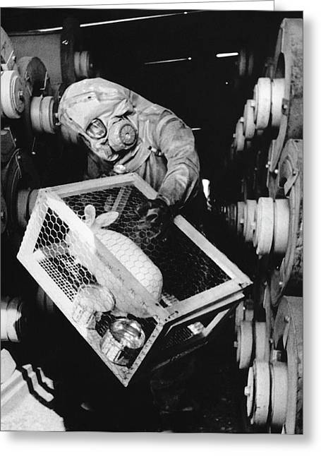Testing For Nerve Gas Greeting Card by Library Of Congress