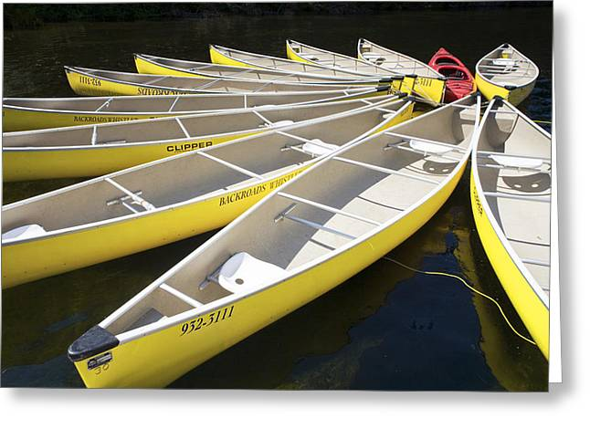 Lost Lake Greeting Cards - Tethered Yellow Canoes at Lost Lake in Whistler British Columbia Greeting Card by Randall Nyhof