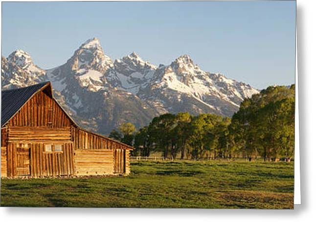 Kelly Greeting Cards - Teton Barn with Bison Greeting Card by Aaron Spong