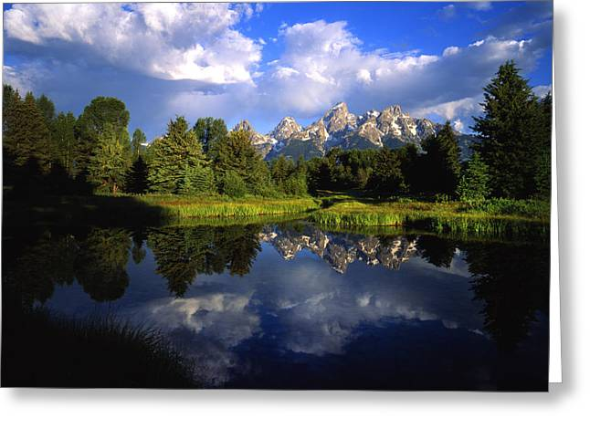 Pond Grand Tetons Greeting Cards - Teton Morning Greeting Card by Ray Mathis