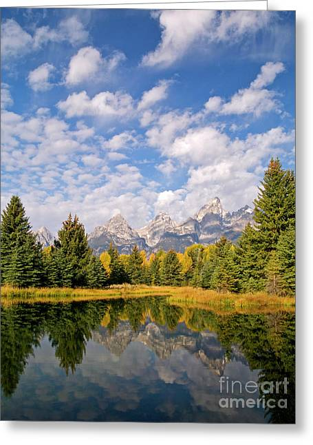 Teton Reflections Greeting Card by Alex Cassels