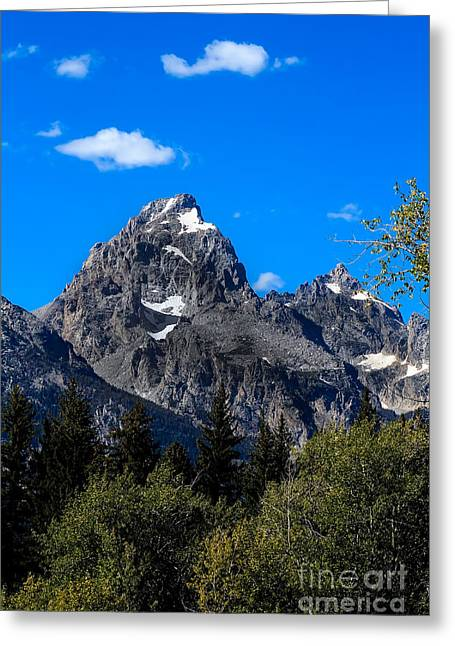 Outlook Greeting Cards - Teton View Greeting Card by Robert Bales