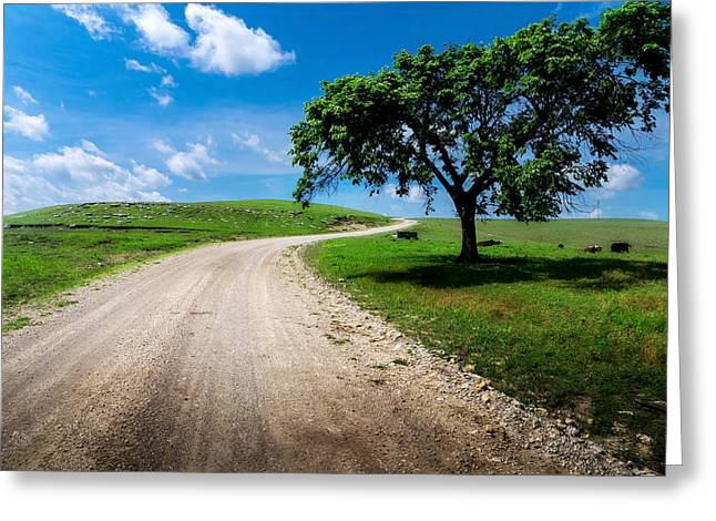 Gravel Greeting Cards - Texaco Hill Greeting Card by Eric Benjamin