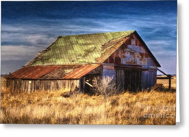 Texas Barn 1 Greeting Card by DS Dodd