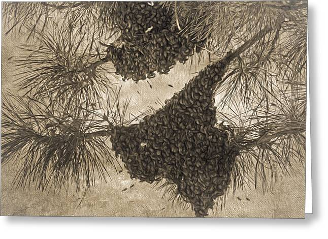 Texas Bees ? Greeting Card by Donna Kennedy