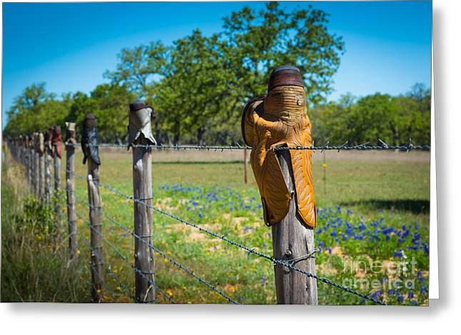 Barbwire Greeting Cards - Texas Boot Fence Greeting Card by Inge Johnsson