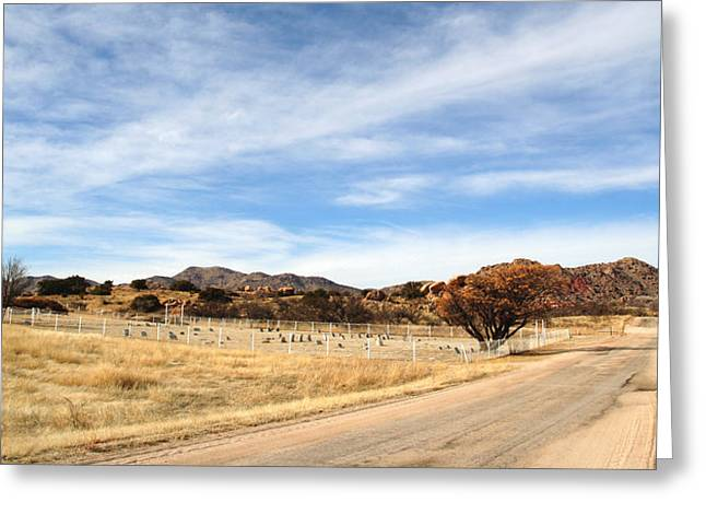 Mountain Road Greeting Cards - Texas Canyon in February Greeting Card by Joe Kozlowski