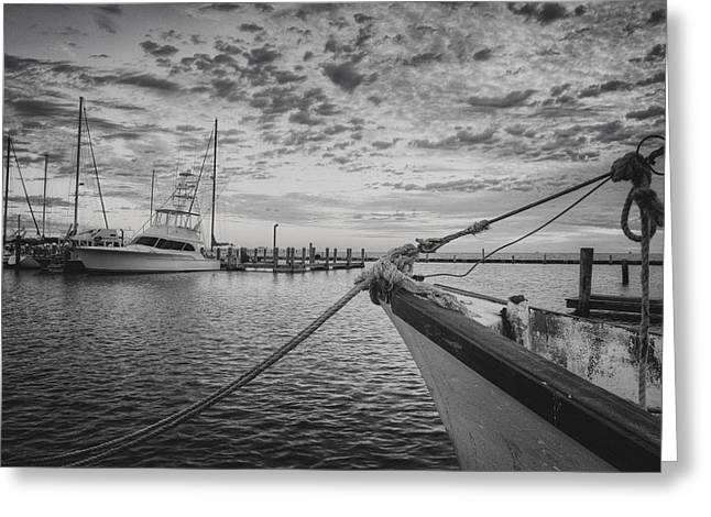 Boats In Harbor Greeting Cards - Texas Gulf Coast Images  Boats of Rockport 4 black and white Greeting Card by Rob Greebon