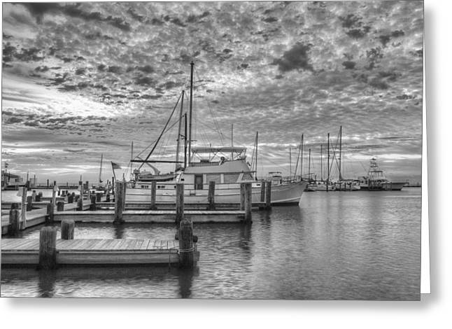 Boats In Harbor Greeting Cards - Texas Gulf Coast Images  Boats of Rockport Texas 11 in black a Greeting Card by Rob Greebon
