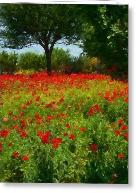 Fredricksburg Greeting Cards - Texas Hill Country Corn Poppies Greeting Card by Michael Flood