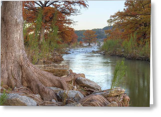 Photos Of Autumn Greeting Cards - Texas Hill Country Images - Cypress of Pedernales Falls 1 Greeting Card by Rob Greebon