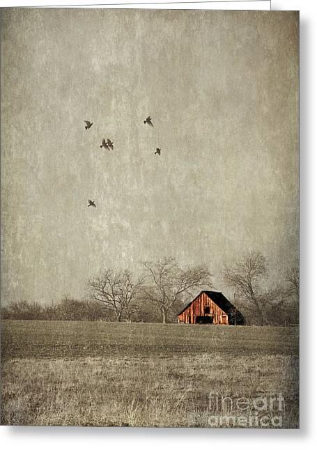 Nosyreva Greeting Cards - Texas landscape Greeting Card by Elena Nosyreva