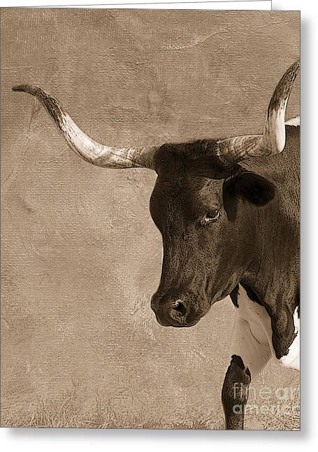 Texas Longhorn Cow Greeting Cards - Texas Longhorn #6 Greeting Card by Betty LaRue