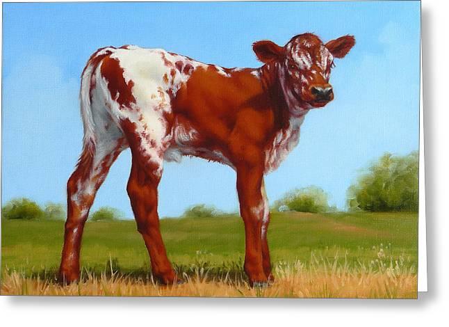 Margaret Stockdale Greeting Cards - Texas Longhorn New Calf Greeting Card by Margaret Stockdale