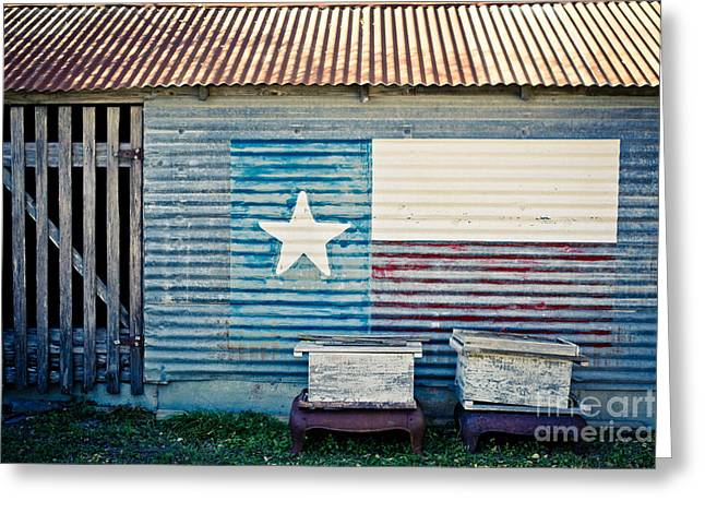 Will Cardoso Greeting Cards - Texas Love Greeting Card by Will Cardoso