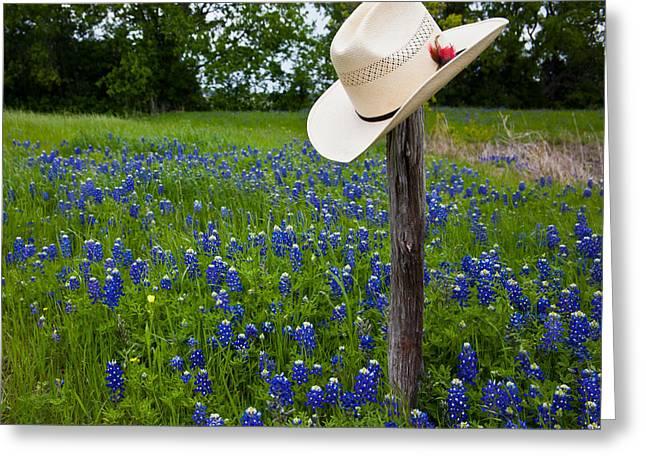 Texas Greeting Card by Mark Alder