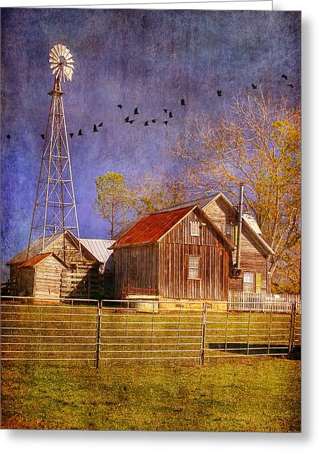 Joan Bertucci Greeting Cards - Texas Ranch Greeting Card by Joan Bertucci