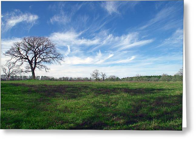 Huntsville Greeting Cards - Texas Sky Greeting Card by Brian Harig