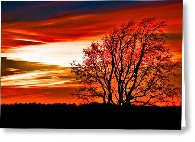 Reds Pyrography Greeting Cards - Texas Sunset Greeting Card by Darryl Dalton