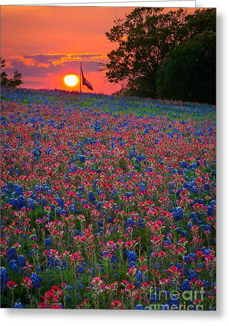 Nature Scene Greeting Cards - Texas Sunset Greeting Card by Inge Johnsson