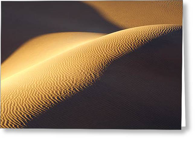 Sand Patterns Greeting Cards - Texture Pattern On Sand Dunes Greeting Card by Panoramic Images